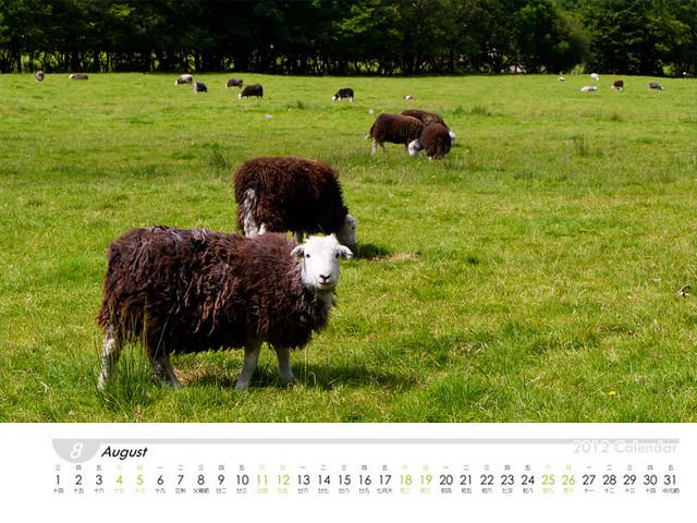 calendars_08