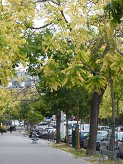 Boulevard Edgard Quinet (Pierre MM) Tags: paris france de ile montparnasse quinet quartier edgard
