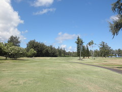 Turtle Bay Colf Course 179