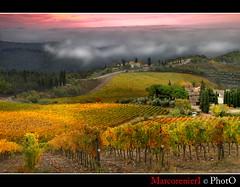 """Toscana """"Il Chianti"""" (marcorenieri) Tags: panorama foglie campagna chianti toscana uva nebbia autunno rosso colori vigne luce renieri"""