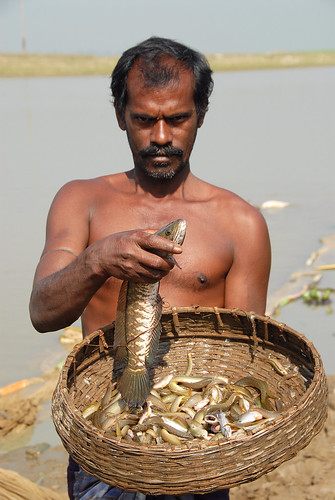 Fisherman, Bangladesh. Photo by WorldFish, 2007