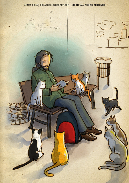 cat herder