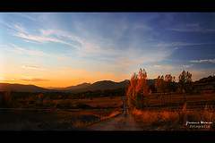 El camino (Yavanna Warman {off}) Tags: autumn light sunset espaa sun fall luz sol field grass leaves forest way landscape hojas atardecer leaf spain warm rboles sundown camino path paisaje vista campo otoo puestadesol len caliente montaas hierba clido boar ltytr1 yavanna grandoso yavannawarman