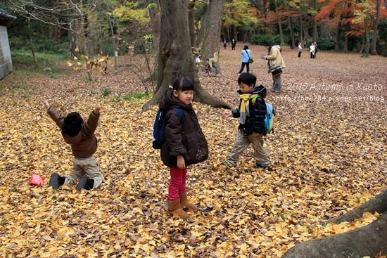 20101207_KyotoWithMoFei_1096 f