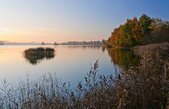 Colorful autumn at lake Seeham (Gerald W. Photography) Tags: autumn lake nature water germany landscape bayern deutschland bavaria see nikon wasser herbst natur oberbayern countyside 2011 d90