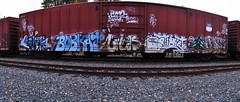 Sworne, Bobkat, Chek, Optimist, Plantrees, Case (BayAreaGraff) Tags: california ca railroad b cars lines car train de graffiti bay pano tag rail trains tags panoramic case pop tagged east gore um area pear boxcar eastbay bobcat optimist lib freight bmb shak chek nbs handstyles freights holms ftl plantrees sworn benching libk bobkat sworne nbsk scez bkat