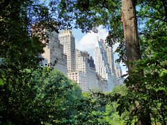 New York, NY (PlotzPhoto) Tags: park nyc newyorkcity travel trees summer urban ny newyork skyline interesting cityscape skyscrapers centralpark manhattan central urbannature nyny centralparksouth urbanjungle picturesque urbandesign newyorknewyork hdr newyorkny essexhouse iloveny urbanpark thepond