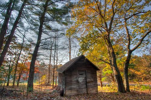 Northeast Late Fall