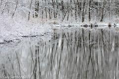 Reflexion On A Frozen Pond (guysamsonphoto) Tags: winter snow mirror pond hiver reflet neige miroir reflexions reflexion étang frozenpond victoriaville victo micronikkor105mmf28 nikond7000 guysamson étantgelé