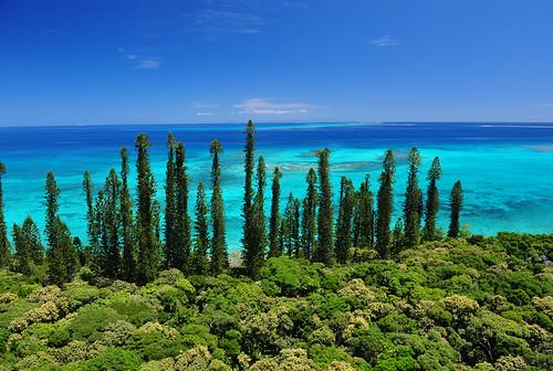 Nuova Caledonia Isola dei Pini