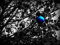 Ornament #2 (BlackAndBlueBeauty) Tags: blue white black tree montana butte uptown ornament