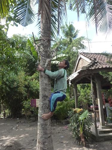 Indo 11-Lombok-Kuta (23)