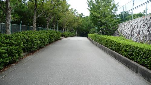 Nishinomiya-34.jpg