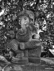 Elefantengott Ganesha -  (BidoneVideo) Tags: ganesha elefant vinayaka ganapati blackwhitephotos  vighnesha elefantengott