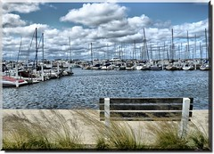 Michigan City Indiana Harbor (Theresa*) Tags: blue sky white lake water clouds sailboat bench oneofakind sails indiana lakemichigan naturesbest michigancityindiana wateroceanslakesriverscreeks flickrnature beautifulcapture scenicoutdoors screamofthephotographer sailinglakemichigan keleka656 nikond7000 adayinthelifeofours onlythebestarememoriesthroughphotography
