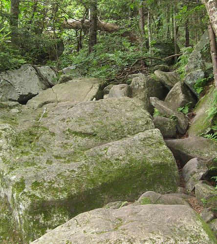 Best Places To Hike Boone Nc: This IS The Trail!