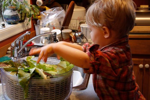 Child Washing Salad (Photo from The Montessori Child at Home)
