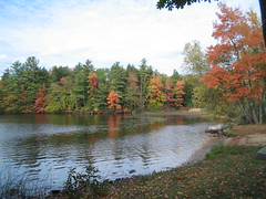 April's View Around Webster Lake, W. Franklin, NH (catchesthelight) Tags: blue autumn trees light red sky orange plants green fall colors beauty leaves yellow flora nh fallfoliage colourful websterlake franklinnh itsmulticolored fallfoliagephotography