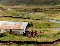 Asamblea indígena en Atillo (cresarteecu) Tags: caballo ecuador altar indios provincia choza reunión lagunas chimborazo meandro asamblea páramo nativos lacustre sudamérica atillo quichuas puruhaes kichwas