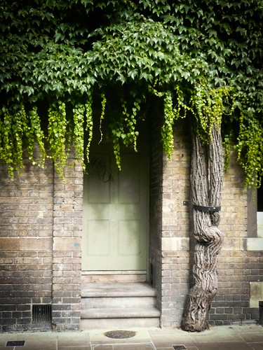 English Doorway, Cotswold, England by Julienne Pascoe