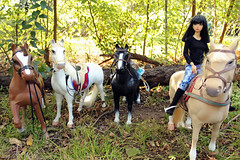 Wish my friends were here (Sylvin13) Tags: autumn horses apple october afternoon ih soa jid macbook iplehouse battat ourgeneration iple