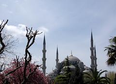 Istanbul (Giorsch) Tags: blue turkey trkiye istanbul mosque trkei moschea turchia blauemoschee moschee minarett sultanahmedmoschee