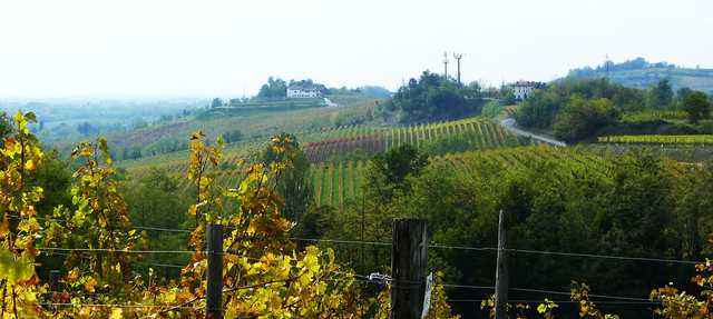 The colors of Collio in autumn