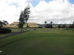 Turtle Bay Colf Course 111