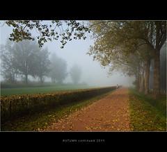 Just a Runner (nldazuu.com) Tags: autumn mist fog nevel arnhem herfst gelderland zonsopkomst rijkerswoerd arnhemzuid rijkerswoerdseplas