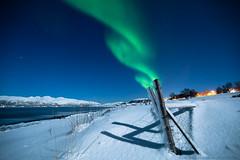 Aurora and moonlight (Explored!) (Tor Even Mathisen) Tags: snow timelapse vinter natur rail aurora moonlight natt borealis måneskinn nordlys skinne オーロラ 北極光 movika stagezero オーロラすごい