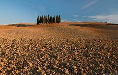 Golden Earth (Tommaso Renzi) Tags: light sunset golden tommaso hills val tuscany toscana valdorcia cypresses dorcia renzi orcia cipressi sanquiricodorcia tuscanycountryside