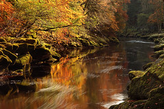 The Strid II (rgarrigus) Tags: autumn england water leaves river landscape moss rocks stream yorkshire foliage flowing picturesque wharfedale riverwharfe thestrid greatphotographers garrigus robertgarrigus robertgarrigusphotography