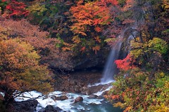 Wonders of Fall (jasohill) Tags: city autumn trees light color japan forest japanese photo waterfall rainbow afternoon seasons falls climbing trail iwate backgrounds 日本 秋 岩手県 風景 crayola mtiwate hachimantai 滝 森 2011 jasohill 八幡平市 松川温泉 canon50d ringexcellence artistoftheyearlevel2 flickrstruereflection1