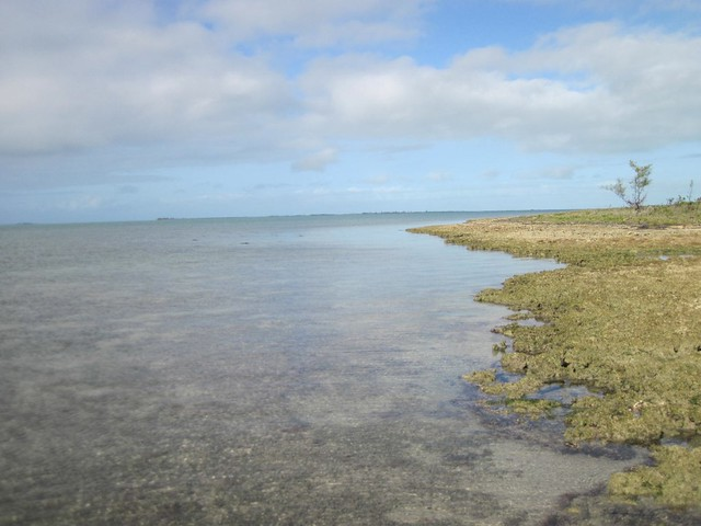 Middle Marls Bahamas