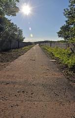 3989 (benbobjr) Tags: uk bridge england train river unitedkingdom yorkshire transport railway dracula viaduct dvr valley whitby transportation disused southyorkshire listedbuilding lms larpool lnwr bramstoker dearne conisbrough railwayviaduct riveresk gradeii lancashireandyorkshirerailway londonmidlandandscottishrailway beechings nationaltrail gradeiilisted larpoolviaduct conisbroughviaduct doctorbeeching londonandnorthwesternrailway beechingsaxe dearnevalleyrailway clevelandwaynationaltrail