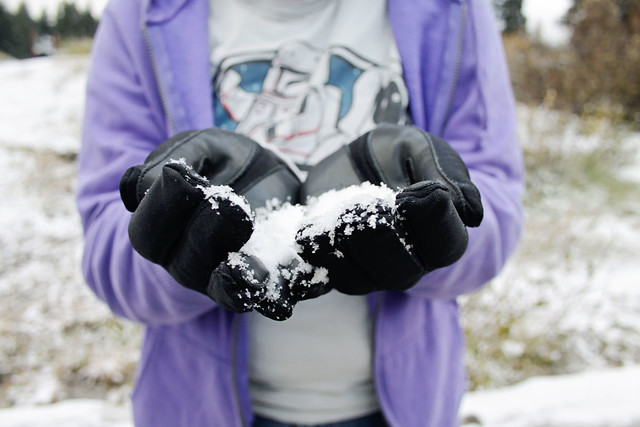 Salt Lake City snow hands