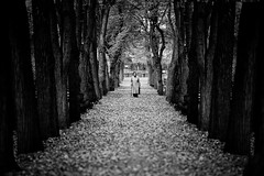 the granny with the walking stick (Dennis_F) Tags: autumn trees woman fall lady zeiss walking alley prague sony herbst prag praha stick fullframe dslr granny bäume 135mm allee granma 13518 a850 sonyalpha sonydslr vollformat cz135 zeiss135 dslra850 sonya850 sonyalpha850 alpha850 sony135 sonycz135