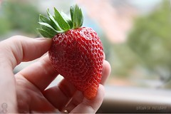 Bom domingo  flickr friends!! (Dircinha -) Tags: brasil canon king strawberries morangos the moranguinhos dircinha