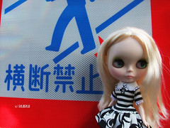 Taking photos of Blythe 5