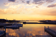 Boats in harbor,Yamashita Park,Yokohama,Japan (flaminghead Park) Tags: park city blue sunset sea sky cloud white tree japan horizontal skyscraper port fence landscape outdoors photography tokyo image background nopeople tourist spotted yokohama colorimage kanagawaprefecture builtstructure boatsinharbor
