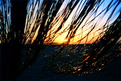 El Mirage Sunset (tobysx70) Tags: california ca sunset toby sun mountain lake 35mm curtain dry el contax strip drape mirage mm hancock 35 mylar t2 contaxt2 tobyhancock