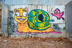 Home is Where You Take It (Viajante) Tags: bear streetart bird art animal austin graffiti us mural texas unitedstates turtle snail castlehill