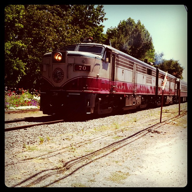 Napa Valley Wine Train...with @AprilKennedy