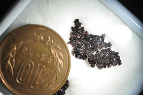 Tartaric acid crystal