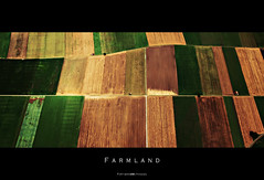 Farmland [Explore 2011-08-17 #402] (Daniel Wildi Photography) Tags: color eye nature colors beautiful birds river schweiz switzerland colorful view farm mosaic hill flight sauerkraut farmland valley crop cabbage land fields thun bern patchwork glider aare 2011 belp cantonbern kantonbern burgistein mhlethurnen belpberg grbetal grbe seftigen danielwildi|photography chabisland