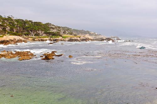 1106-SF&Monterey-3419