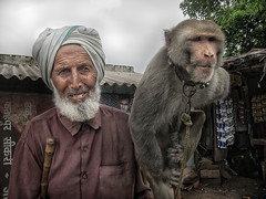 India Views (Gusulabu) Tags: trip travel portrait india animals canon photography monkey retrato textures dragan jaipur indi rajasthan oldmen draganizer dblringexcellence tplringexcellence induindian
