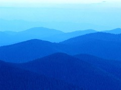 Nature 2010 (lochwouters) Tags: blue test nature stuff lpl lacrossepubliclibrary