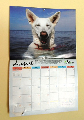Aug. 19-calendar