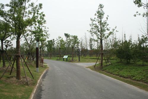 2011-08-21 - Gucun Park - 08 - Trees